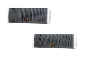 "China Prosound DJ Equipment 200W Passive Line Array Speaker Dual 6.5"" 16ohm factory"